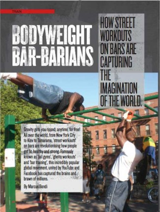 bodyweight-bar
